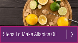 allspice oil for skin
